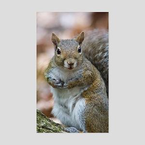 Cute Squirrel Sticker (Rectangle)