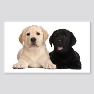 Labrador puppies Sticker (Rectangle)