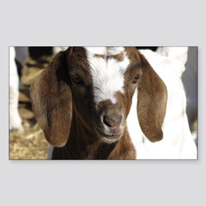 Cute kid goat Sticker (Rectangle)