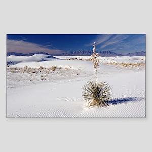 Soaptree yucca (Yucca elata) Sticker (Rectangle)