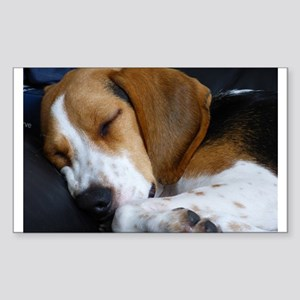 beagle sleeping Sticker