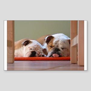 2 sleeping bulldogs Sticker