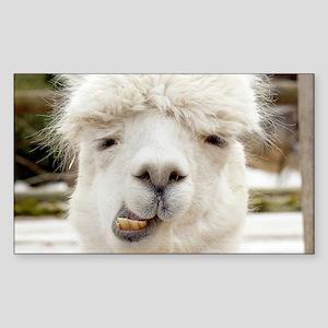 Funny Alpaca Smile Sticker (Rectangle)