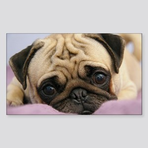 Pug Puppy Sticker (Rectangle)