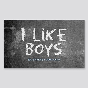 I Like Boys Sticker