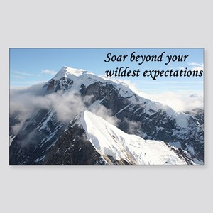 Soar beyond your wildest expectations 4 Sticker (R
