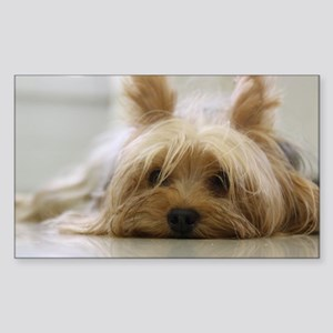 Yorkie Dog Sticker