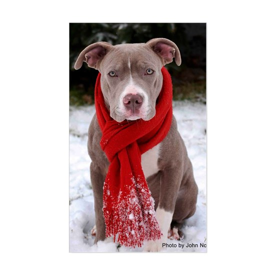Holiday Pit Bull with Red Scarf