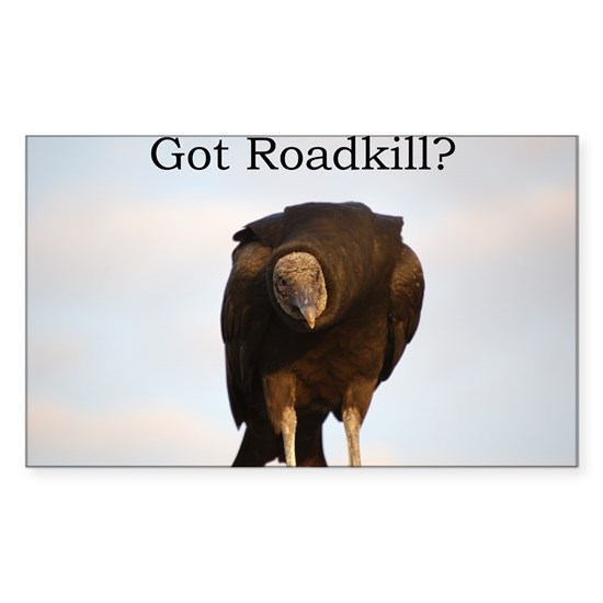 Got Roadkill?