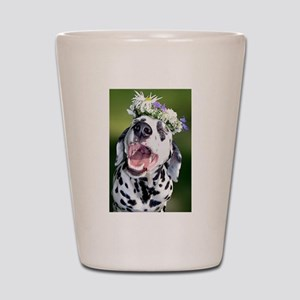 Smiling Dalmatian Dog Shot Glass