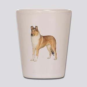 Smooth Collie Gifts Shot Glass