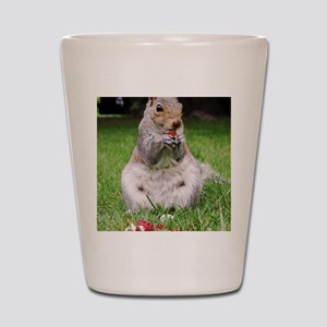 Cute Squirrel Enjoying Nut Shot Glass