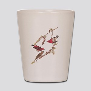 Audubon Purple Finch Shot Glass