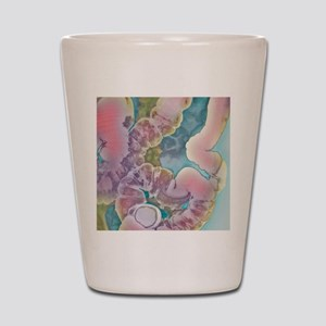 Diverticular disease, X-ray Shot Glass