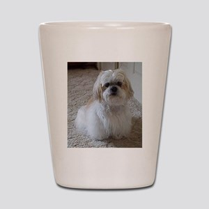 lhasa apso sitting 2 Shot Glass