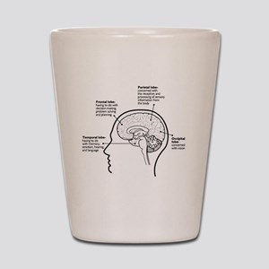 Brain Functions Shot Glass