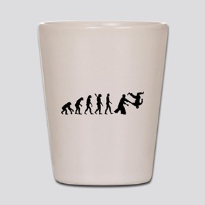 Evolution Aikido Shot Glass