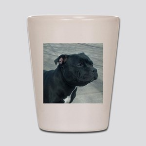 staffordshire bull terrier Shot Glass