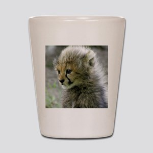 Cheetah010 Shot Glass
