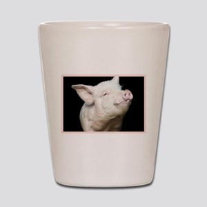 Cutest Pig Shot Glass