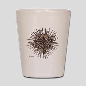 Sea Urchin Shot Glass
