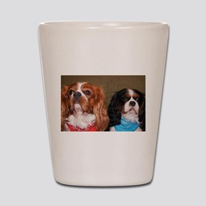 2 cavalier king charles spaniels ls Shot Glass
