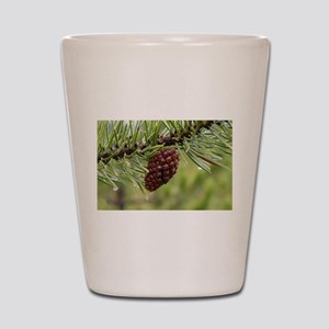 Pine Cone Shot Glass