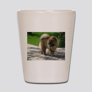 chow chow full Shot Glass