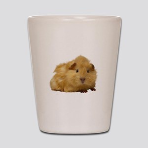 Guinea Pig gifts Shot Glass