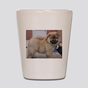 puppy chow chow Shot Glass