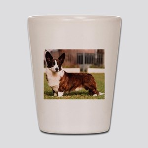 cardigan welsh corgi full Shot Glass