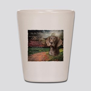 """Why God Made Dogs"" GSP Shot Glass"
