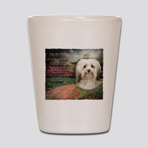 Why God Made Dogs - Havanese Shot Glass