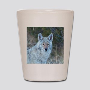 Watercolor Coyote Shot Glass