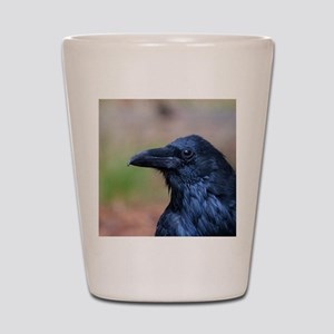 Portrait of a Raven Shot Glass