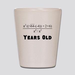 Algebra Equation 30th Birthday Shot Glass