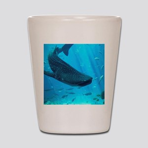 WHALE SHARK 2 Shot Glass