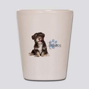 Havanese Puppy Shot Glass