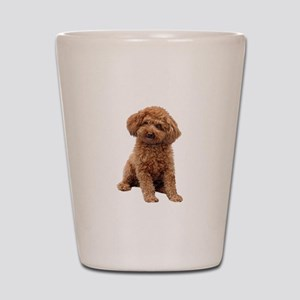 Poodle-(Apricot2) Shot Glass