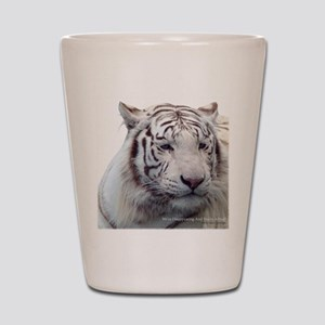 Disappearing Tigers Shot Glass