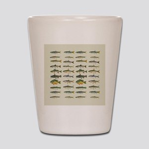 Freshwater Fish Chart Shot Glass