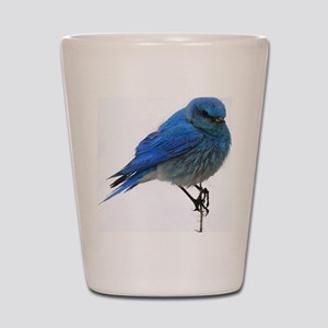 Mountain blue bird Shot Glass