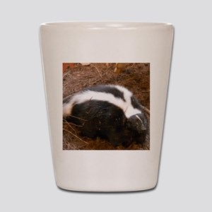 Friendly Little Skunk Shot Glass