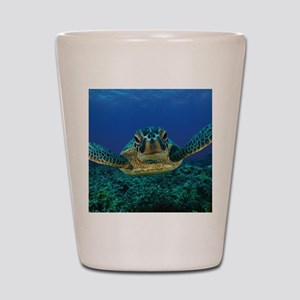 Turtle Swimming Shot Glass