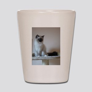 ragdoll Shot Glass