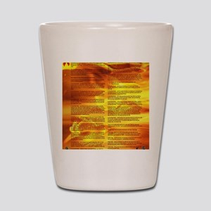 A World With CRPS - Memo Style 17 x 24  Shot Glass