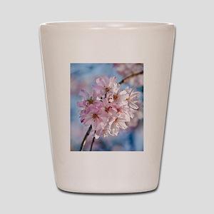 Japanese Cherry Blossoms Shot Glass