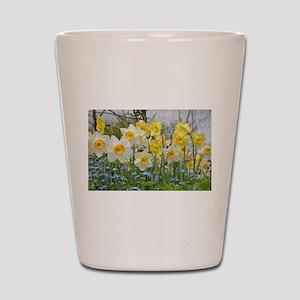 White and yellow daffodils Shot Glass