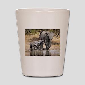 Elephant mom and babies Shot Glass