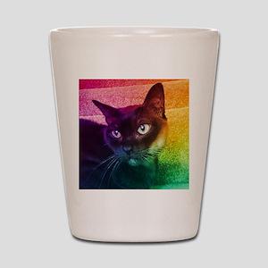 Burmese Cat Portrait B Shot Glass